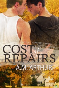 The Cost of Repairs