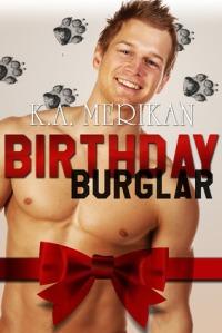 Birthday Burglar by K.A. Merikan