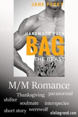 Bag-the-Beast