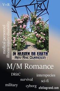 In-Heaven-or-Earth